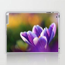 Crocus Flower in the Colorful Field in Spring Laptop & iPad Skin