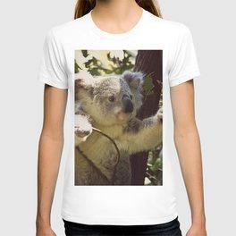 Sweet Koala Baby T-shirt