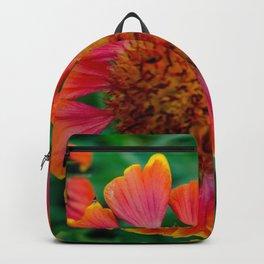 Redder Backpack
