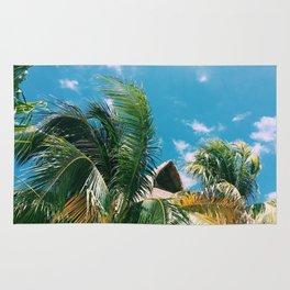 Isla Paraiso Rug