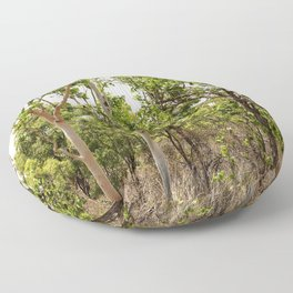 Beautiful forest regrowth Floor Pillow