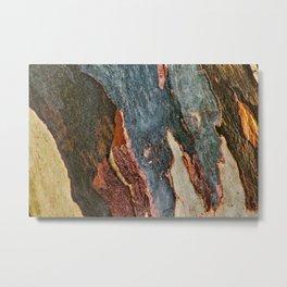 Eucalyptus Tree Bark and Wood Abstract Natural Texture 28 Metal Print