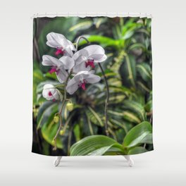Tropical Orchids Shower Curtain