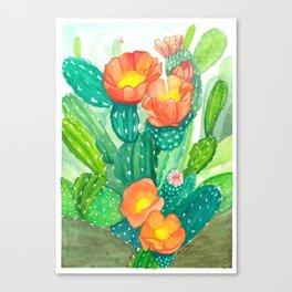 Cacti Beauty Canvas Print