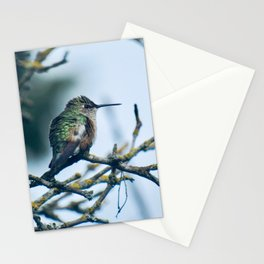 Ruffled Hummingbird Stationery Cards