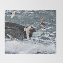 Gulls shop for Dinner Throw Blanket