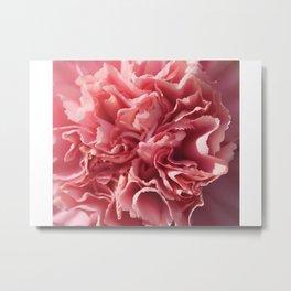 The Pink Flower Metal Print