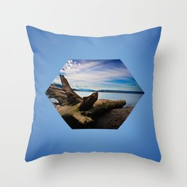 Exposition in Blue Throw Pillow