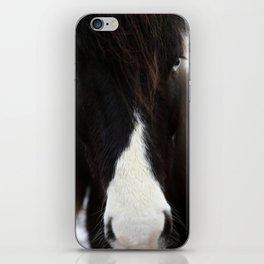 Blue Eye Icelandic Horse iPhone Skin