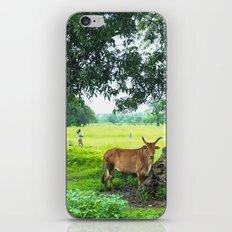 India [3] iPhone & iPod Skin