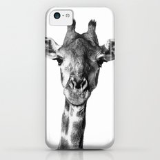 Giraffe Portrait I iPhone 5c Slim Case