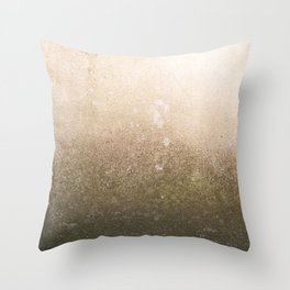 Copper surface Throw Pillow