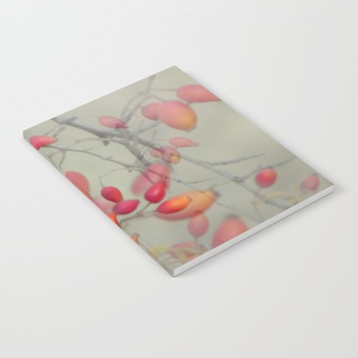 Cinorrodo Notebook