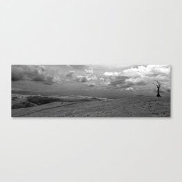 Dead Lonely Tree Canvas Print