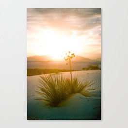 white sands sunset 2 Canvas Print