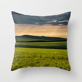 Before Sunset Throw Pillow