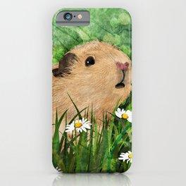 Guinea Pig iPhone Case