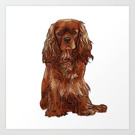Cavalier King Charles Spaniel - Ruby Art Print