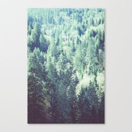 Trestle in the trees Canvas Print