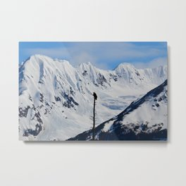 Perch With A View - I Metal Print