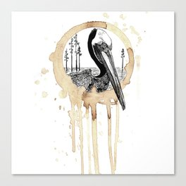 Coffee Stained Brown Pelican-Louisiana Series Canvas Print