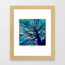 Branches reaching out Framed Art Print