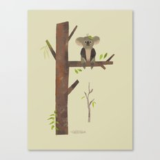 Sitting Up A Tree Is Where Koala's Meant To Be Canvas Print