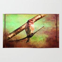 Finch Songbird on Cherry Tree Burl ~ Ginkelmier Inspired Rug