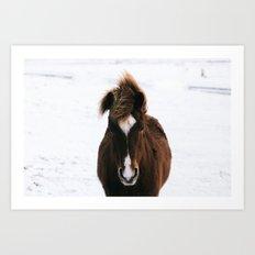 Snowy Horse Art Print