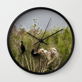 Anhinga Family Tree Wall Clock