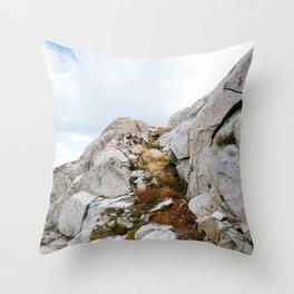 Desolation Mountainside Throw Pillow