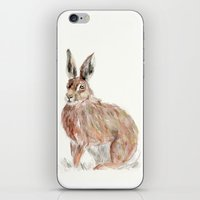 hare iPhone & iPod Skins featuring HARE  by Joelle Poulos