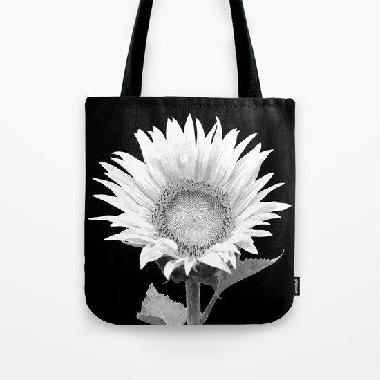 White Sunflower Black Background by alemi