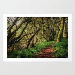 Bunkers Hill Edgefield 3 Art Print