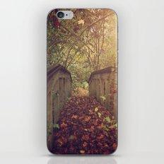 Autumn Bridge iPhone & iPod Skin