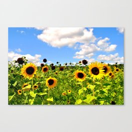 HAPPY FLOWERS. Canvas Print