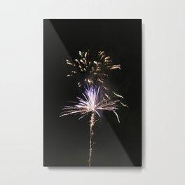 Fire works Metal Print