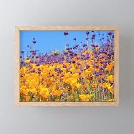 Orange Poppies and Purple Wildflowers with Butterfly (2) by Reay of Light Framed Mini Art Print