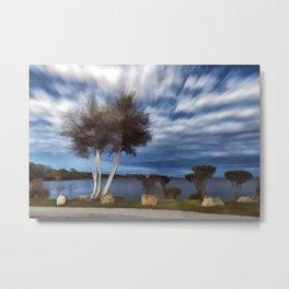Birch tree by the pond Metal Print