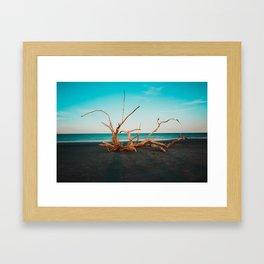 Jekyll Island, USA #society6 #decor #buyart Framed Art Print