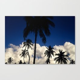 Crandon Beach. Key Biscayne, Florida Canvas Print