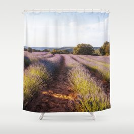 Lavender Fields at Sunset Shower Curtain