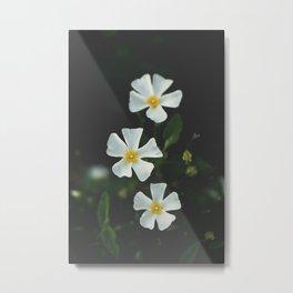 Matte Flowers Portrait Metal Print