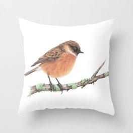 European stonechat Throw Pillow