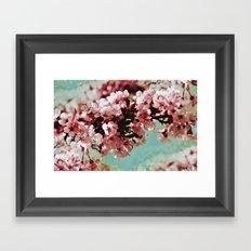 Springblossom - photography Framed Art Print