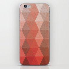 Reflection No. 5 iPhone & iPod Skin