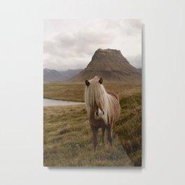 Kirkufell Pony Metal Print