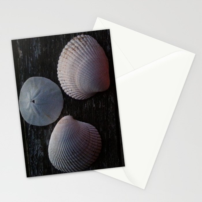 Sea Shells in Morning Light Stationery Cards