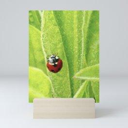 Bishy Barney Bee Mini Art Print