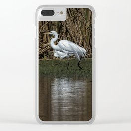 Great and Snowy Egrets, No. 3 Clear iPhone Case